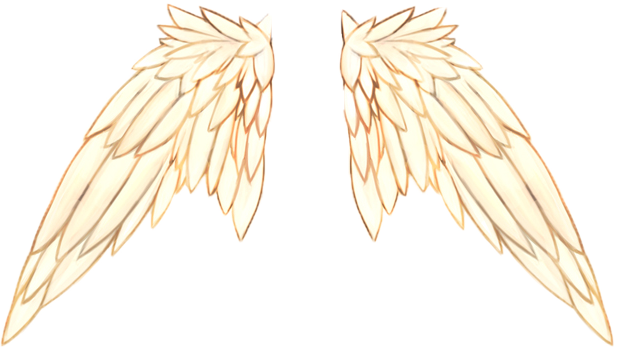 Click image for larger version. Name:	Angel Wings.png Views:	544 Size:	198.2 KB ID:	1294