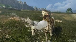 Black Desert Online screenshot 2