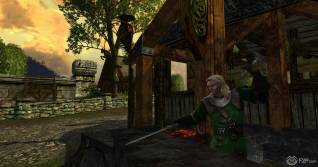 Lord Of The Rings Online screenshot (8)