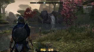 elder-scrolls-online-screenshots-28