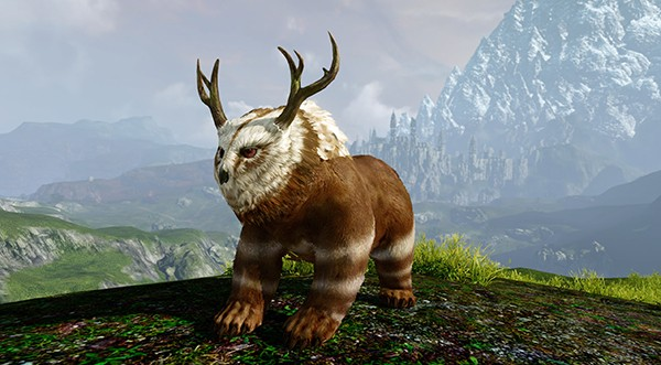 Archeage Owlina - ArcheAge will launch 5.3 Relics of Hiram